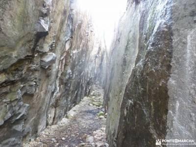 Gran Cañada-Cerro de la Camorza; grupos de personas para viajar viaje noviembre excursion de un dia